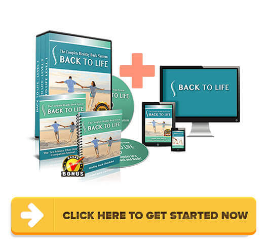 Download Back to Life - 3 Level Healthy Back System PDF