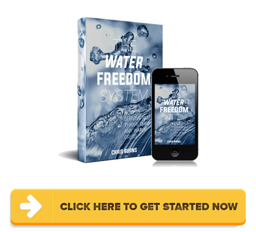 Download Water Freedom System PDF