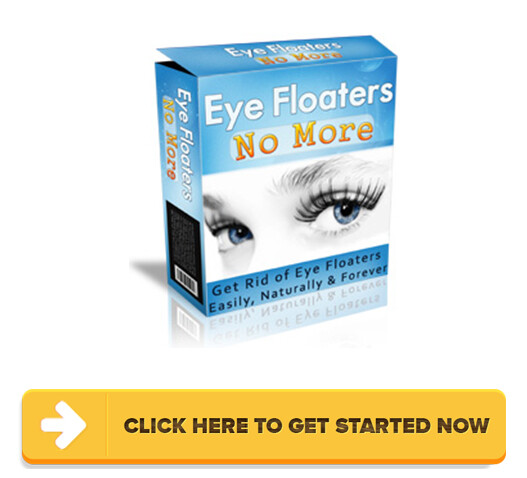 Download Eye Floaters No More PDF
